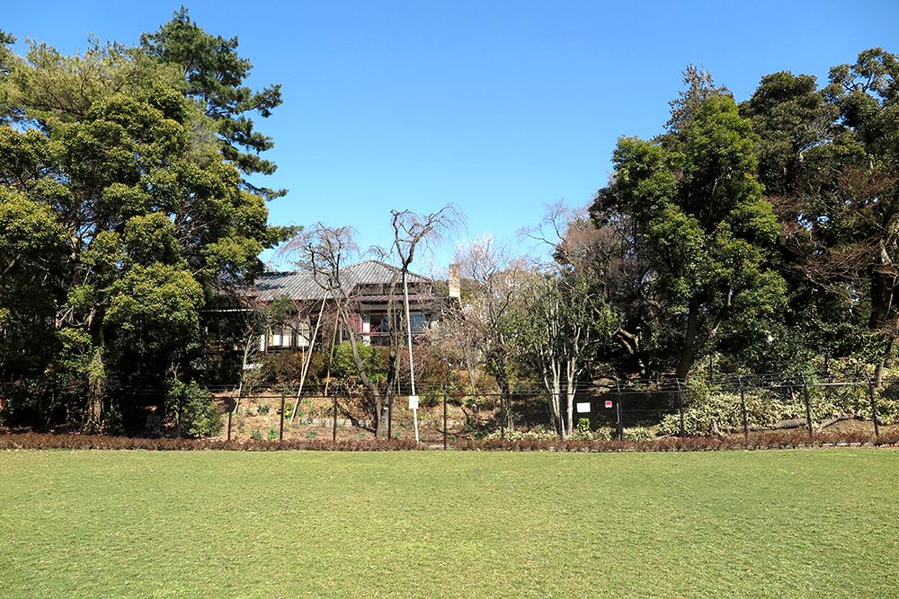 現在暫定開放されている「(仮称)荻外荘公園」の敷地。