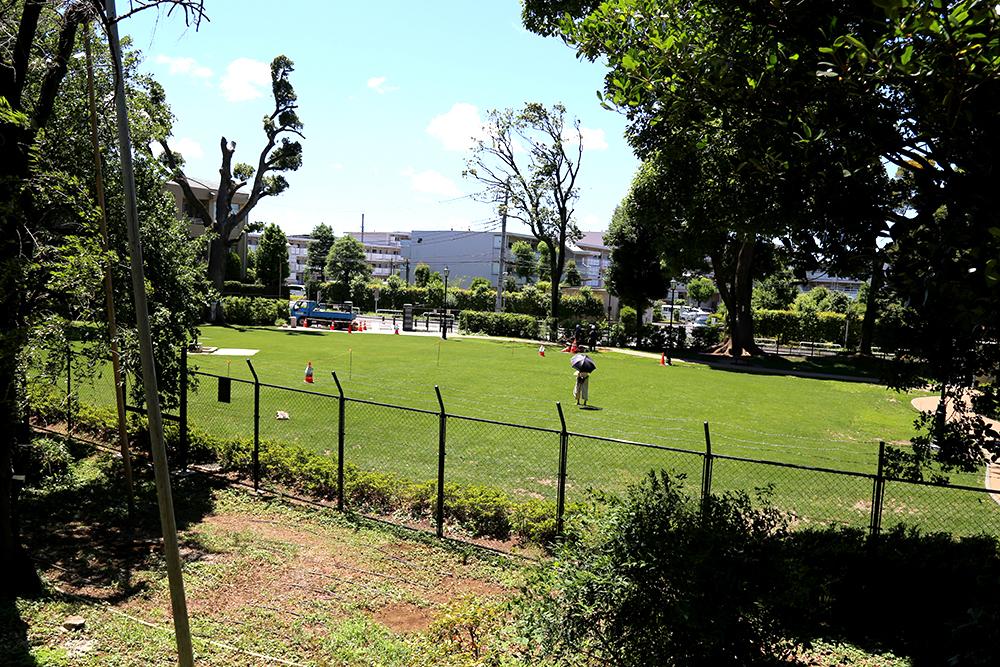 荻外荘敷地から見た現在の景観。購入当時の敷地は、善福寺川対岸まで拡がっていたといわれています。