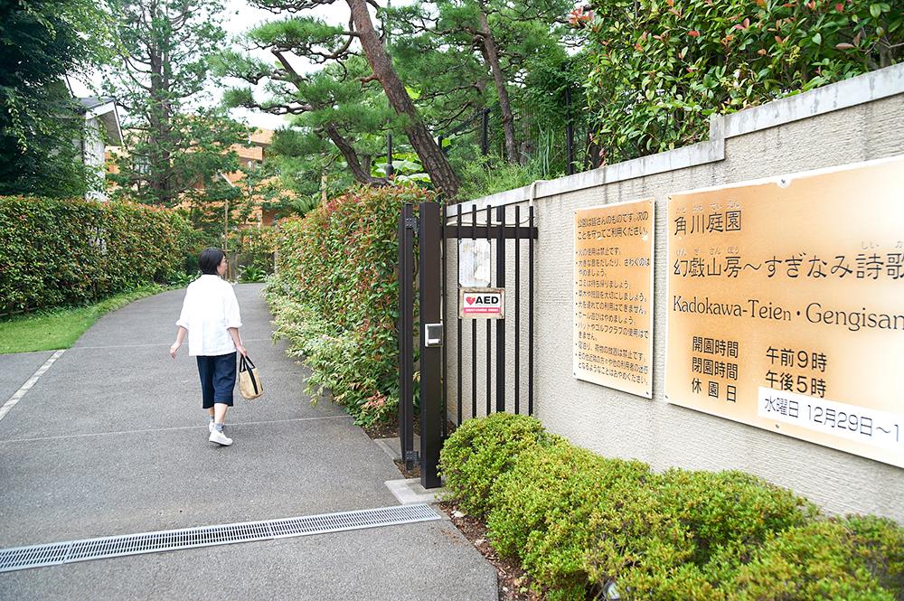 門を通り抜けると、緑に覆われた空間が現れます。庭園は武蔵野の雑木林を意識して造られ、様々な草花の表情が楽しめます。